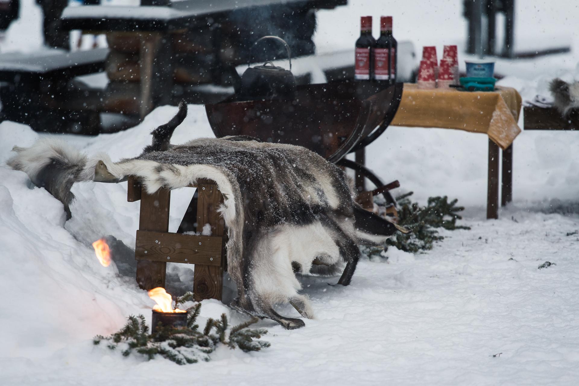 Adventshelg - julmarknad på Lomkällan
