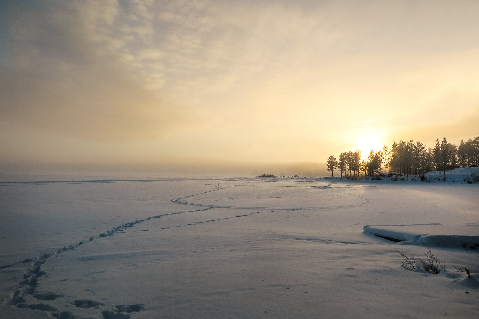 Frihet nordomsjön