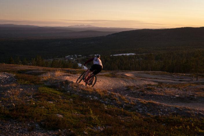 Cykling i solnedgång Idre Fjäll