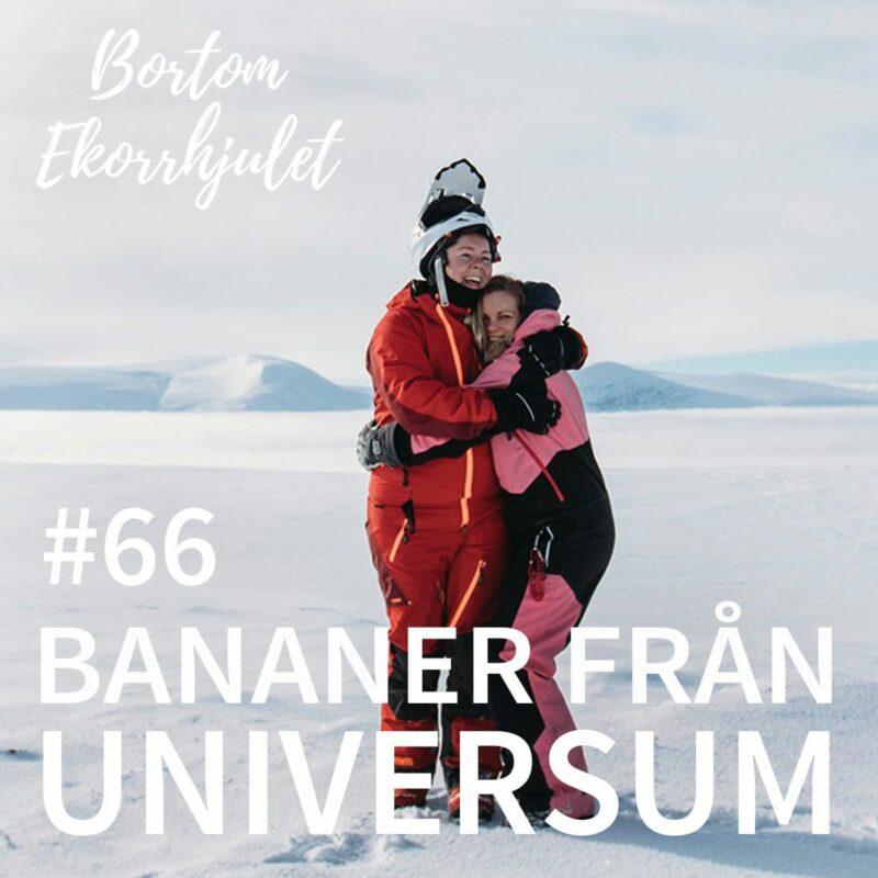 66. Bananer från universum